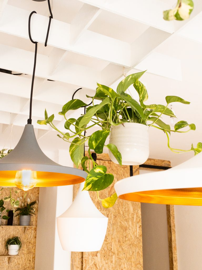 Custom light feature at coworking Portimao
